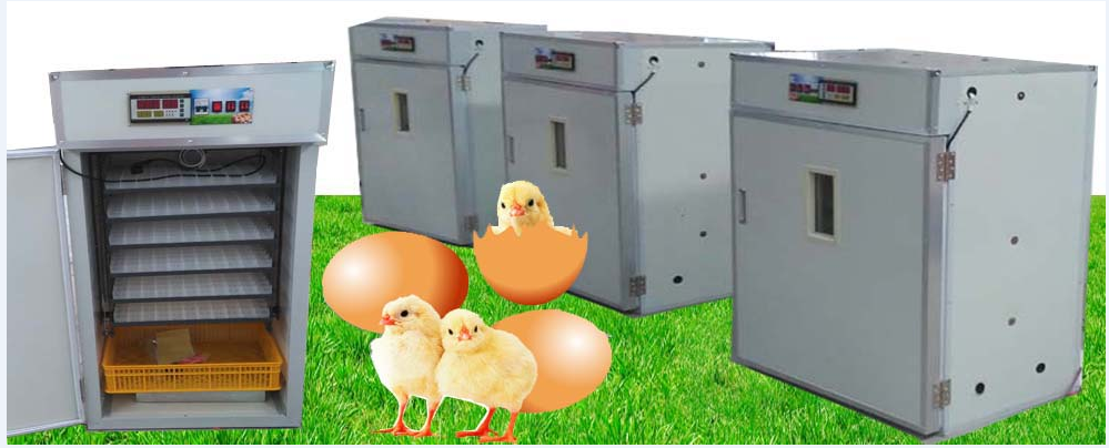 5280 Capacity egg incubator hatcher combined machine