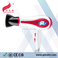 Fashion Hair Dryer/Blow Dryer XDM-1310