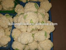 2016 fresh cauliflower (China)