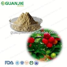 Acerola Cherry Extract Powder