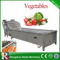 fruit and vegetable cleaning washer machine for frozen vegetable processing line