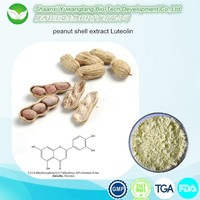 herbal antioxidants Natural Luteolin Extract Powder Luteolin 98%