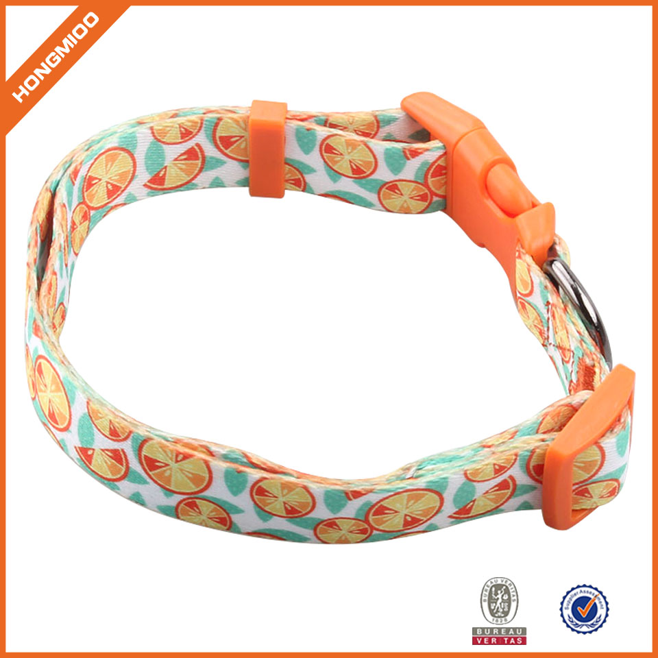 Festival Present Best Gift Newest Western Style Polyester Patterned Designer Personalized Nylon Dog Collar