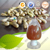 Factory Supply Natural Grape Seed Extract 95% OPC