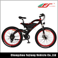 2015 hot sell 48v 11.6Ah Li-ion battery with 500w rear hub motor green power electric bike