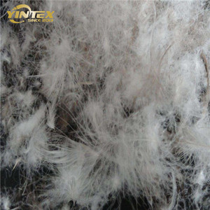 Hot Sale Wholesale Cheap Price Washed White Goose Down Feather