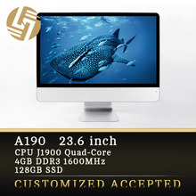 Superb IPS Large Display 23.6 inch Full HD All in One PC Computer