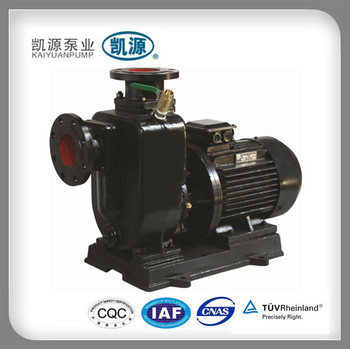 ZWL Drainage Pump With Motor
