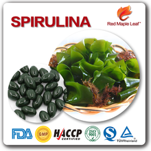 Nutrition Products Custom English Packing Spirulina Capsules