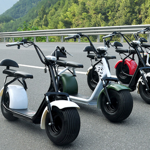 2018 best price electric scooter citycoco/two fat wheel electric motorcycle scooter
