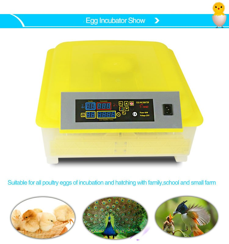 new agricultural machines names and uses CE ISO certification 48 full automatic egg incubator for sale