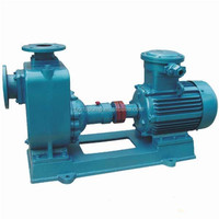 Self-Priming Electric Sewage Trash Centrifugal Water Pump