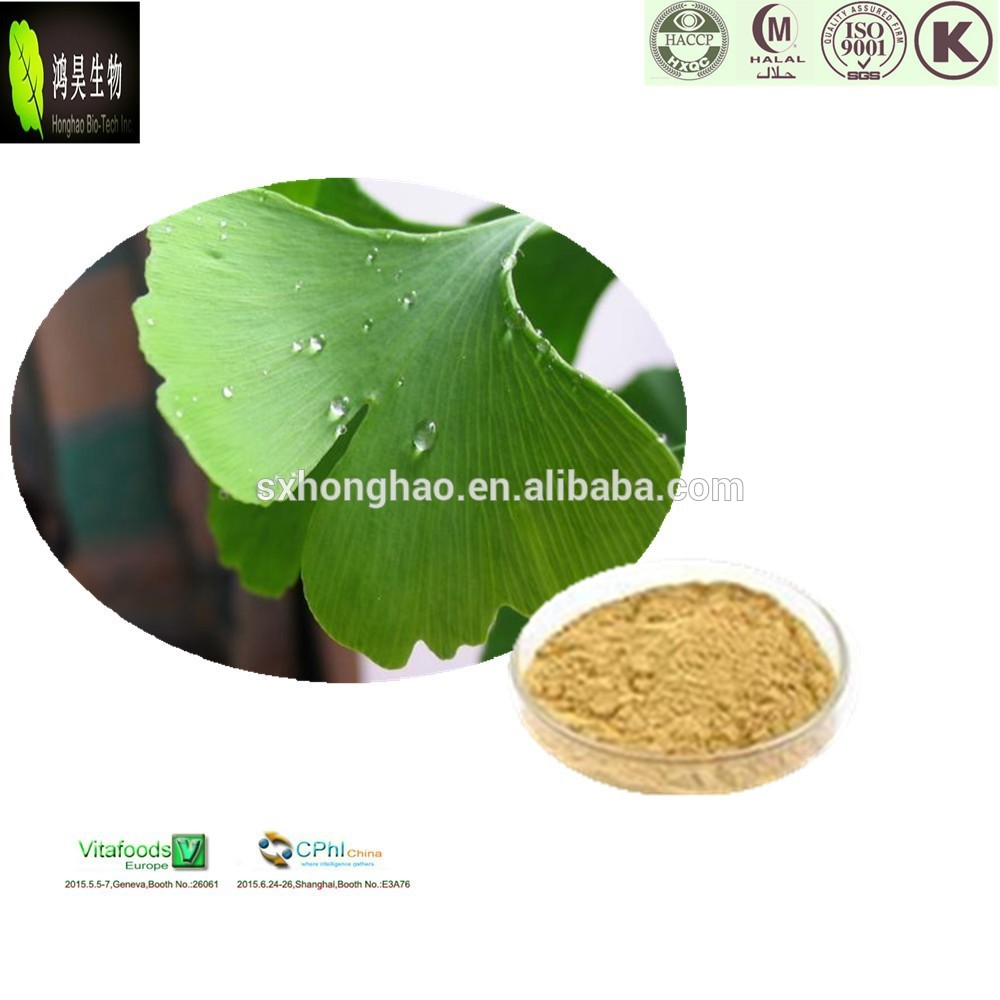 Natural herbal medicine water soluble Ginkgo Biloba Extract