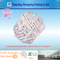 Unbelievable Low price Plastic Bio Packing, PP packing in Air Stripper