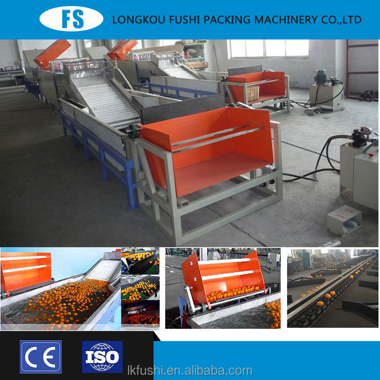 2015 newest fruit ce certification and iso 9001 mango grading sorting machine. fruit washing and waxing machine