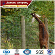 goat mesh fencing/ sheep and goat fence panels