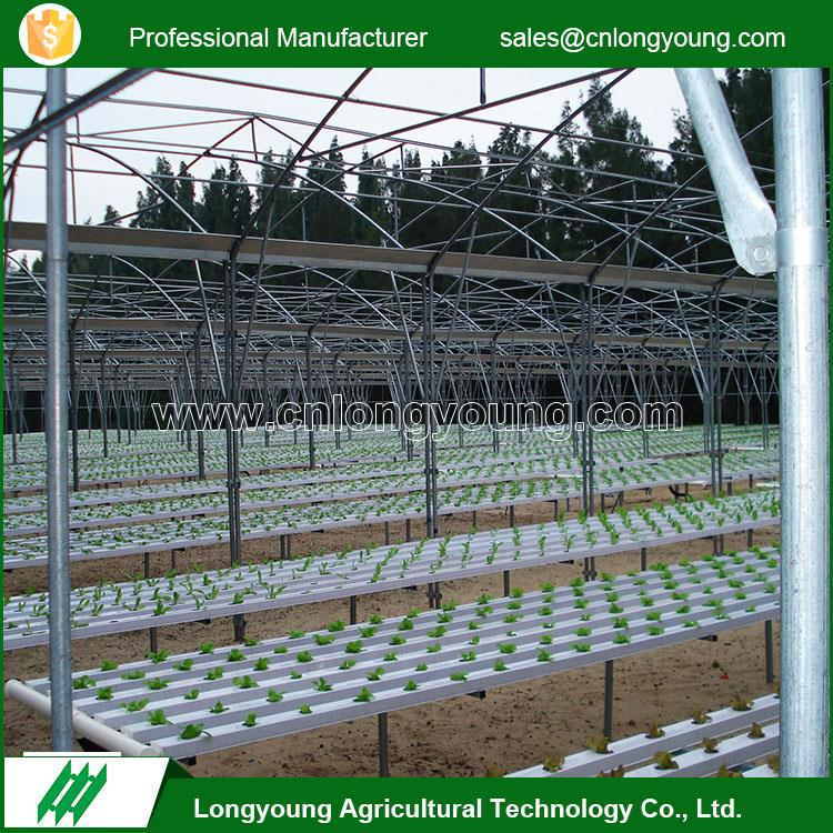 Custom easy management greenhouse vertical hydroponic system