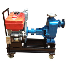 Hot Sale Farm Irrigation Diesel Water Pump