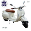 COC /EEC aprroved 1500W brushless electric motorcycle