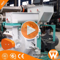 Best Selling China Strongwin bio energy fuels plant biomass wood pellet machines south africa
