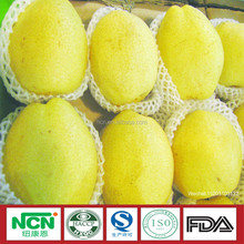 Top quality sweet juice China Fresh pear