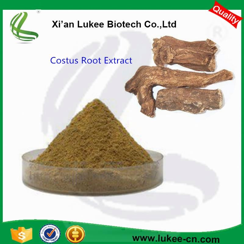 Costus Root Extract Powder 10:1 Radix Inulae