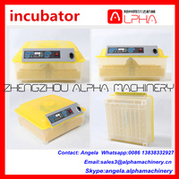multifunctional hatching peacock egg incubator/ incubator motor gear /incubator accessories