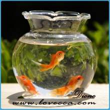 china factory export fashion fish bowls plant terrarium for sale