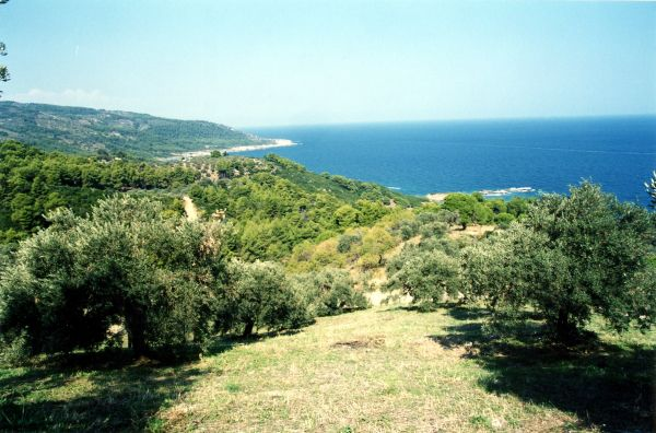 Land for agriculture/construction on Greek island