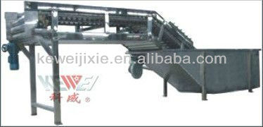 QXJ surf type cleaning and fruit and vegetable sorting machine
