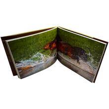 Well designed full color custom paperback hardcover book printing
