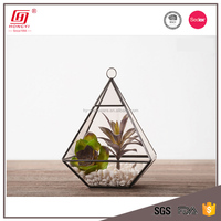 Pyramid Geometric Glass Terrarium / Hand Made Planter / Air Plant glass vase