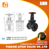 large size cast iron flanged rising stem russia gate valve