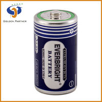 Long lasting r20 d size um-1 zinc-carbon dry cell battery for water heater
