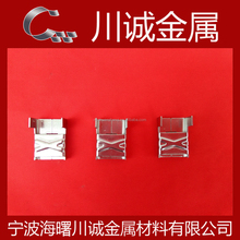 Stainless Steel Wing Seal Buckles