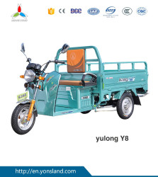 China popular Cheap cargo motor tipper tricycle