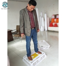 China Plastic Durable Moving Animal Box For Live Poultry
