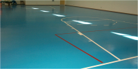 Indoor sports surfacing products