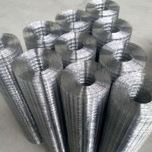 Competitive factory price anti-cold 1x1 pvc coated welded wire mesh