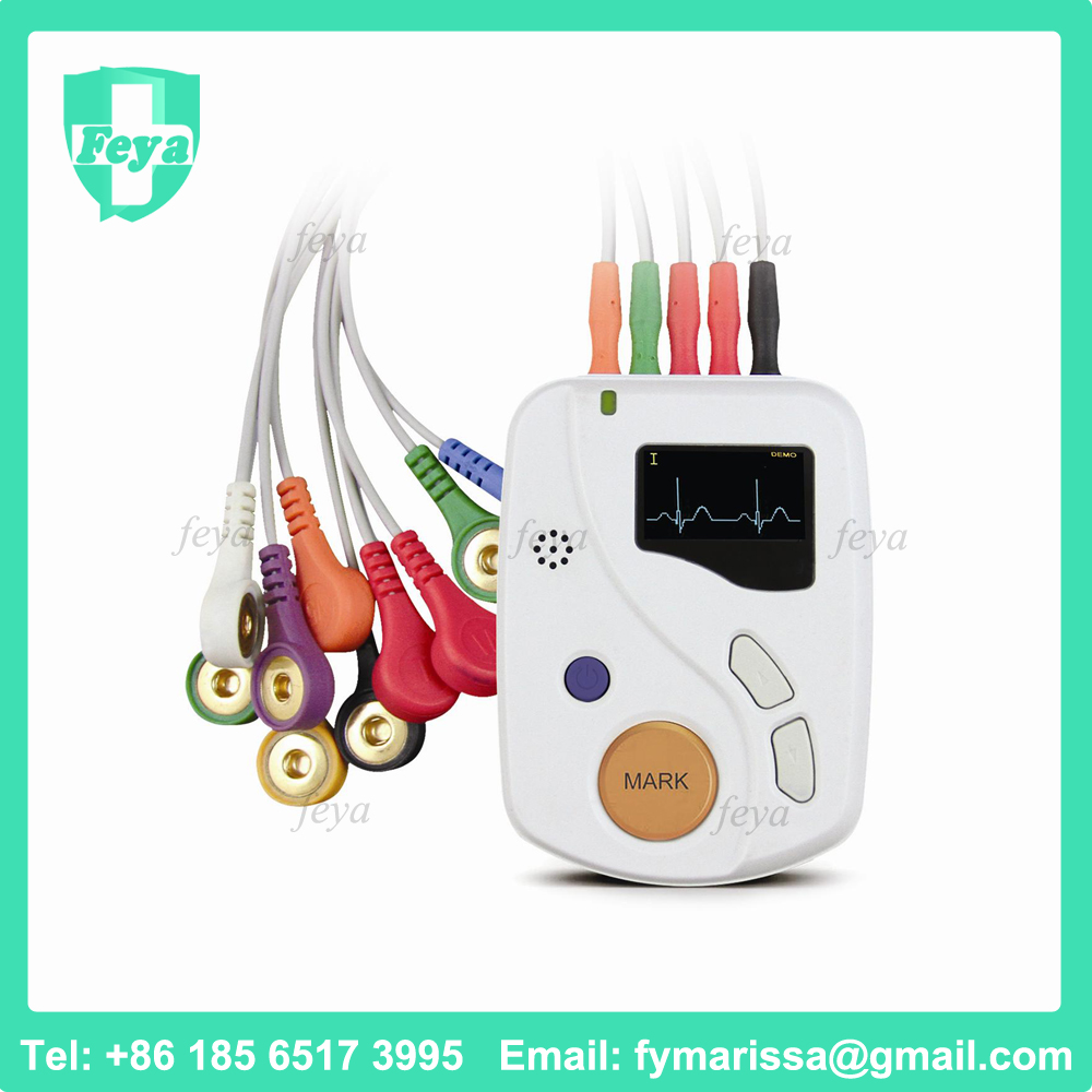 FY-TLC6000 12 Leads 48hours Dynamic ECG Holter Recorder System with CE