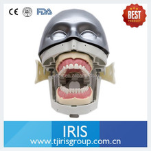 Oral Simulation Practice System Dental Phantom Head for Dental School.