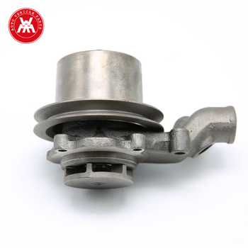 U5MW0108 water pump with pully from China