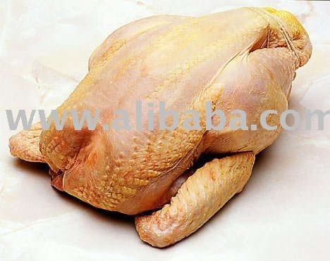 Frozen Halal Whole Chicken