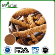 Factory deirectly supply nepal cordyceps polysaccharide cordyceps militaris extract for wholesales