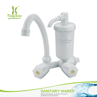 Luxury white new Wall Mounted water nozzle filter faucet