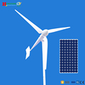 5kw wind solar hybrid power system made in Qingdao