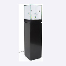 Design modern wood jewelry glass display showcase for sale