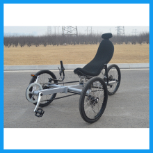 Tadpole Racing Trike for Adults Journey