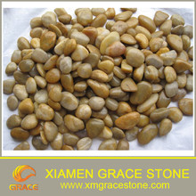 Yellow Natural Pebble and River Stone for Landscaping