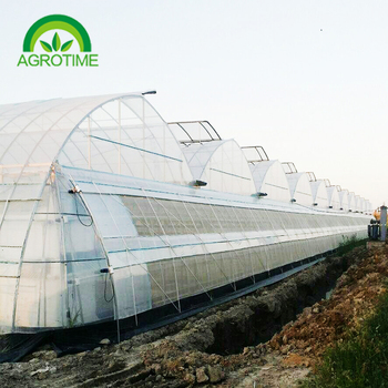 low cost agricultural greenhouse with roof window